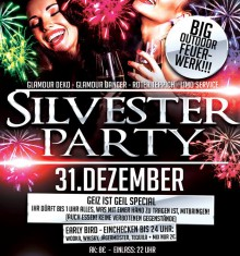 2013 / 14  SILVESTER PARTY !!!